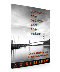Between-the-bridge-and-the-water austin hill shaw
